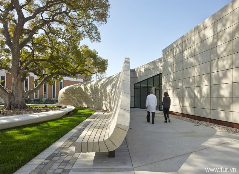 Concrete wall seating design