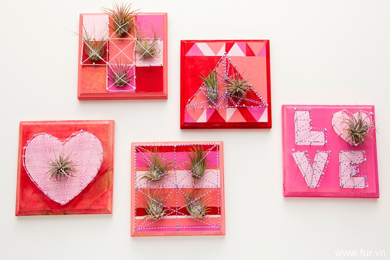 Air Plants + String Art = Living Wall Art!