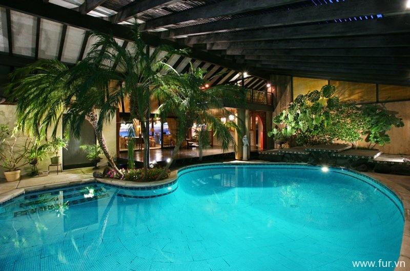 Tropical Pool
